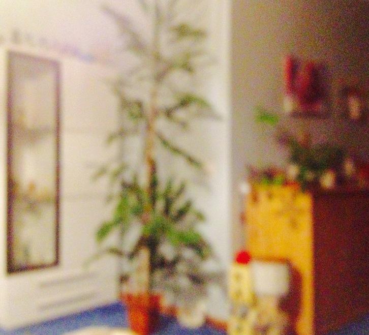 3 Zimmerwohnung  BL 4