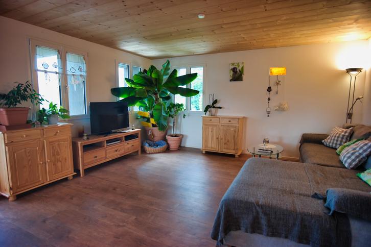Helle 3.5 Zimmer Wohnung in komplett renoviertem Bauernhaus 6433 Meierskappel