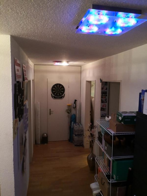3 ½ Zimmer-Wohnung in Stallikon mieten Stallikon