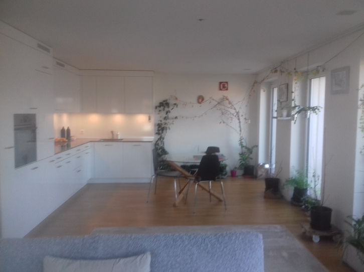 2,5 Zimmer Attika-Wohnung 8590 Romanshorn