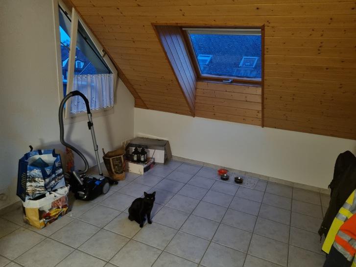 2.5 zimmer Wohnung 2