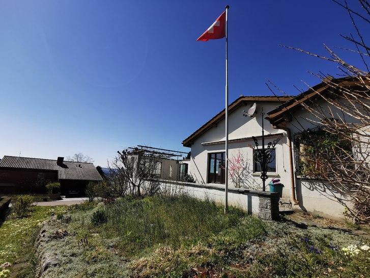 Ruhiges freistehendes 5.5 Zi.-EFH - 750m2 Garten, Terrasse, Aus- & Fernsicht 3
