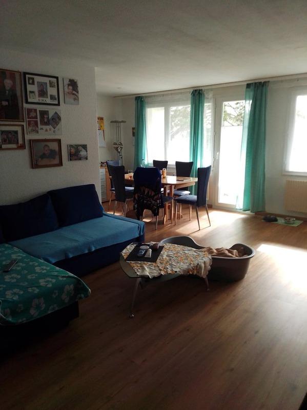 Schöne 4.5 Zi.-Wohnung in Roggwil BE, sucht Nachmieter ab 01.08.2021 4914 Roggwil BE