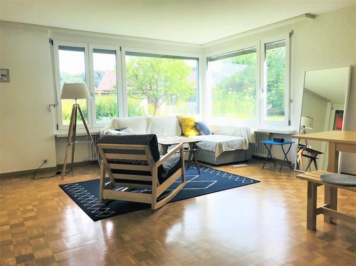 4,5 Wohnung in Luzern zu vermieten 6043 Adligenswil