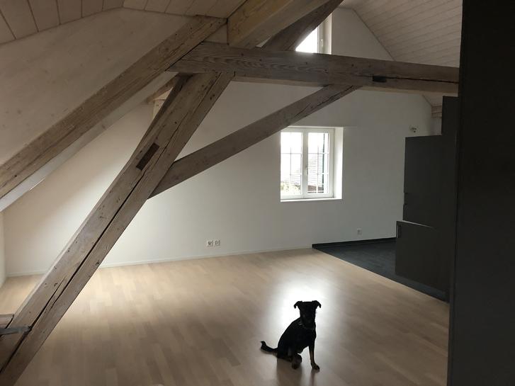 Helle 2.5 Zimmer Dachwohnung mit sehr viel Charme  4