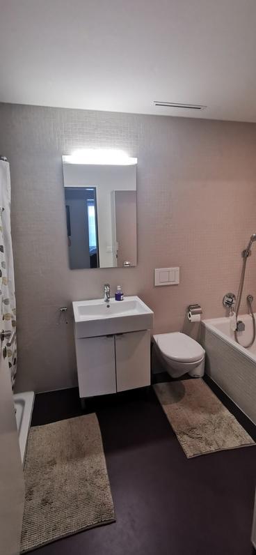Helle, moderne 3.5 Zimmer Wohnung im steuergünstigen Ballwil 4