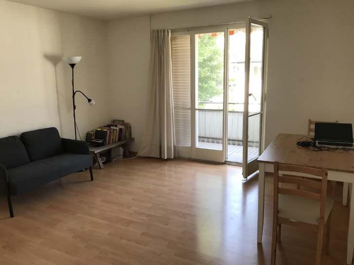 Gemütliche, helle, zentrale Wohnung zu vermieten 8952