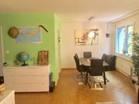 3,5 Zimmer Wohnung Luzern