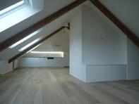 (Kreis 6) traumhafte LOFT-DACHWOHNUNG (Fläche einer 2,5-Zimmer-Wohnung)