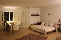 Schöne 2.5 - Zimmerwohnung in Rapperswil-Jona
