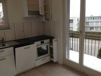 frisch renovierte 4-Zimmerwohnung in Wädenswil