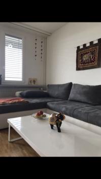Helle 1.5 Zimmerwohnung in Bern - TEMPORÄR