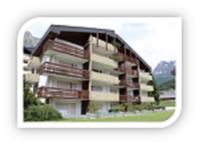 Appartementhaus Pfeiren: Helle, grosse 1.5-Zimmerwohnung mit Südbalkon und kleiner Terrasse