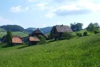 2.5 Zi.-Wohnung in Bauernstöckli in Oberthal