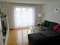 Schöne, lichte, geräumige 3.5-Zimmer-Wohnung in 8132 Hinteregg ZH