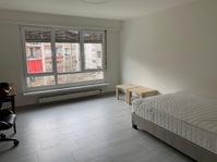 ruhige u. moderne 1.5 Zimmer Wohnung im Gundeli ab sofort
