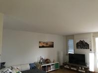 4.5-Zimmer-Parterre-Wohnung/90m2