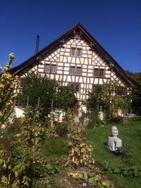 Lauschige 4 1/2 Zimmer Wohnung in Fachwerkhaus in Maugwil / Nähe Wil