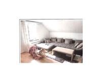 3.5 Zimmer Dach-Wohnung