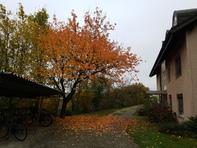 Grosse, helle 4.5-Zi-Wohnung in Zuchwil