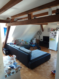 3.5-Zimmer Dachwohnung mit Garten zur mitbenützung