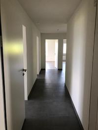 Neu sanierte 4.5 -Zimmer Wohnung mit Ausblick auf die Linthebene