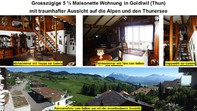 Traumhafte 5 1/2 Zimmer Maisonette Wohnung in Goldiwil