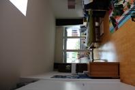 1 ½ Zimmer-Wohnung in Olten mieten