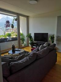 Möblierte 2.5 Zimmer-Wohnung zur Untermiete in der Neustadt Luzern