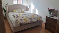 Cozy room to rent