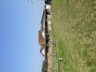 3.5 Zimmer Wohnung auf Bauernhof  mit Mutterkühen und Pferden